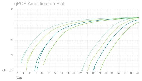 qPCR-chart